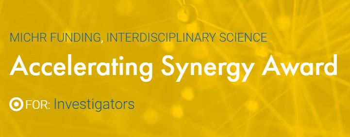 Synergy Award Logo